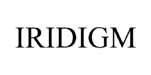 Iridigm Display Corporation